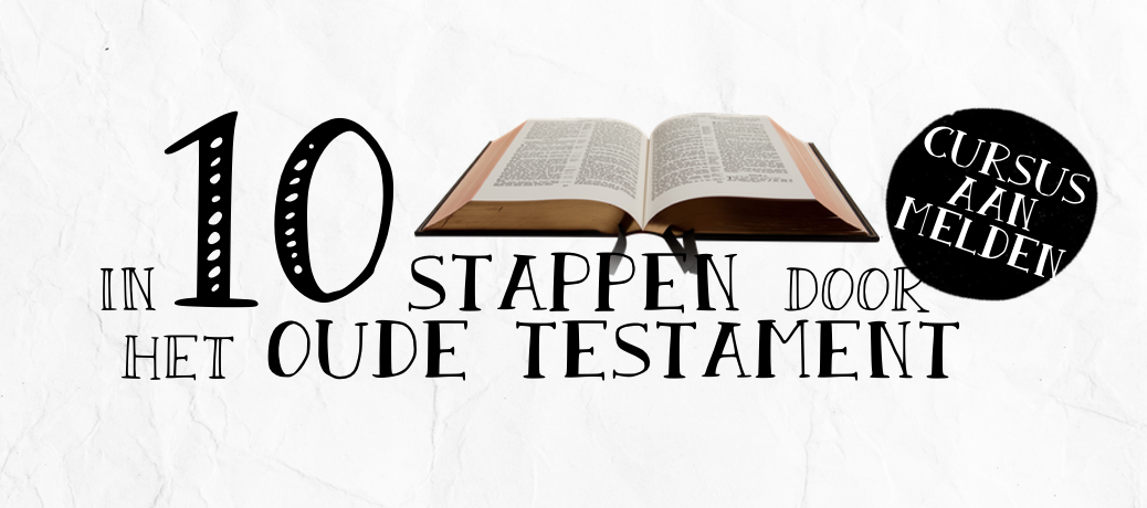 Banner 10dstappenoT3