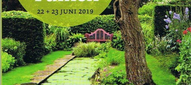 Tuin Ichthuskerk open tijdens 'Struinen in Haagse Tuinen'
